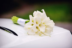 Bridal bouquet of calla lilies Royalty Free Stock Image