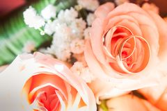 Bridal bouquet of cream roses Stock Photo
