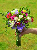 Bridal bouquet of freesia flowers Royalty Free Stock Image