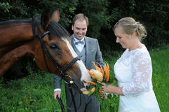 Bridal bouquet for the horse Stock Images