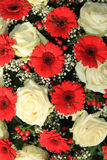 Bridal bouquet in red and white Royalty Free Stock Photography