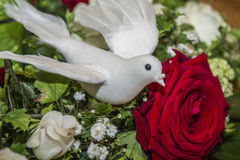 Bridal bouquet with roses and white wedding dove Stock Image