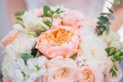 Bridal bouquet of tender peonies stock image