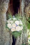 Bridal Bouquet in a Tree Royalty Free Stock Photos
