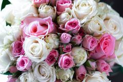 Bridal bouquet of white and pink. Roses royalty free stock photography