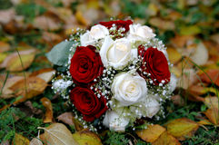 Bridal bouquet. Of white and red roses in the autumn leaves Royalty Free Stock Photo