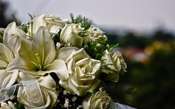 Bridal bouquet of white roses stock image