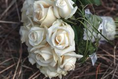 Bridal bouquet of white roses on a faded grass Royalty Free Stock Photos