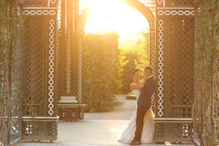 Bridal couple embracing in sunlight. Beautiful bridal couple embracing in sunlight Stock Photography