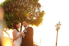 Bridal couple embracing in sunlight. Beautiful bridal couple embracing in sunlight Royalty Free Stock Photo