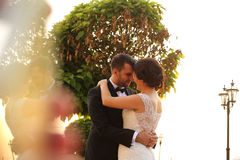 Bridal couple embracing in sunlight. Beautiful bridal couple embracing in sunlight Stock Photo
