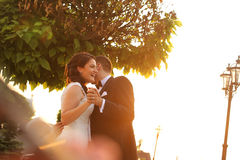 Bridal couple embracing in sunlight. Beautiful bridal couple embracing in sunlight Stock Image