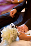 Bridal couple holds hands Royalty Free Stock Photography