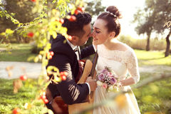 Bridal couple in nature Stock Image