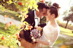 Bridal couple in nature Stock Photos