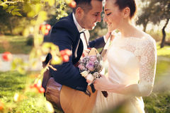 Bridal couple in nature Royalty Free Stock Image