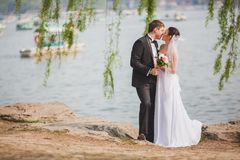 Bridal couple standing near lake Stock Photography