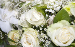 Bridal flowers. Close-up of bridal flowers. Texture or background Royalty Free Stock Photo