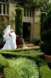 Bridal Garden Stock Photo