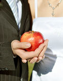 Bridal Groom Wedding Hands. And apple Stock Photography