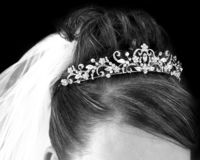 Bridal Hair royalty free stock photo