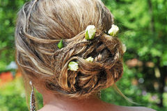 A Bridal Hair Arrangement with Rosebuds. A close-up of a bridal hair arrangement with fair rosebuds in blond hair viewed from the back Royalty Free Stock Photography