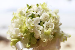 Bridal image. Royalty Free Stock Image