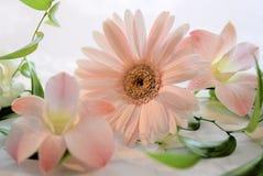 Bridal Image. Graceful and elegant bridal flower arranging Royalty Free Stock Photography