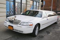 Bridal limousine in DUMBO neighborhood in Brooklyn Stock Photos