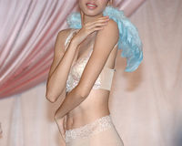Bridal lingerie Royalty Free Stock Photos