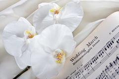 Bridal orchids. Bridal March sheet music and white orchids royalty free stock photography