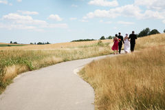 Bridal party. Is walking down the road Royalty Free Stock Images