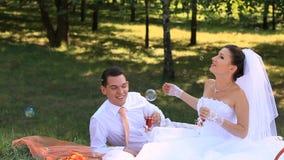 Bridal Picnic stock footage