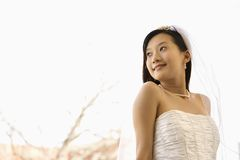 Bridal portrait. royalty free stock photography
