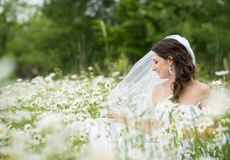 Bridal portrait Royalty Free Stock Photos