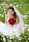 Bridal portrait Stock Image