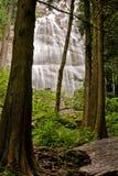 Bridal przesłona Spada blisko Chilliwack, BC fotografia royalty free