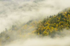 Bridal przesłona Spada prowincjonału park w mgłowym, Kanada fotografia royalty free