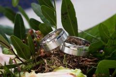 Bridal rings Stock Image