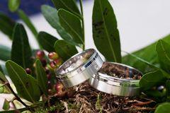 Bridal rings Stock Images