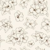 Bridal seamless pattern Royalty Free Stock Photography