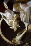 Bridal shoe Stock Photography