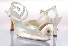 Bridal shoes. In reflective white surface and a marguerite. Classic wedding image Stock Photography