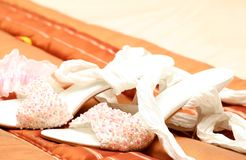 Bridal shoes with beads Royalty Free Stock Photography