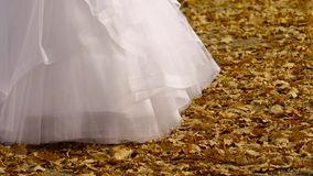Bridal smokingowy kołysać w jesieni zbiory wideo