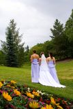 Bridal Stroll. A bride and two bridesmaids stroll through a park on her wedding day stock images