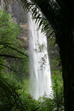 Bridal Veil Falls. New Zealand stock photography