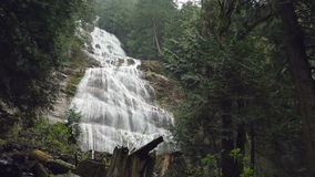 Bridal Veil Falls, British Columbia Forest stock video