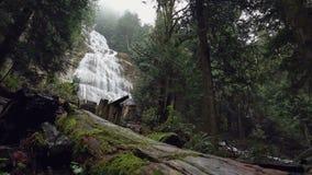 Bridal Veil Falls, British Columbia stock video