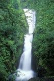 Bridal Veil Falls, Oregon Royalty Free Stock Photo